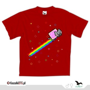 Nyan Cat in Space !